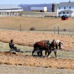 Amish Man Sentenced to Six Years in Prison for Not Seeking FDA Approval