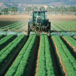 New Dicamba Herbicide Wreaks Havoc across the US