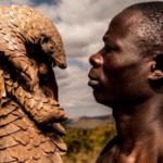The Pangolin Men: Saving the World's Most Trafficked Mammal