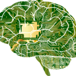 The Fatal Flaw in the Brain-Computer Interface