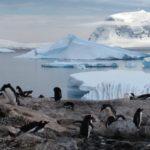 The Antarctica Strangeness List Just Became Even Stranger