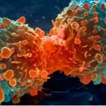 The VOLTAGE of Cancer: Why Give It All Up for Wi-Fi Cancer?