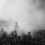Monsanto Loses Lawsuit and $289 million
