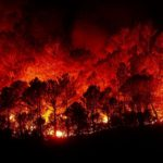 The California Fires: Strangeness Squared