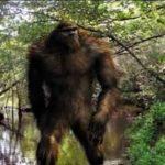 The Scientific Case for Sasquatch: Richard Dolan & Jeffrey Meldrum Ph.D.