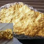Mudfossil Studies: Gold's True Source