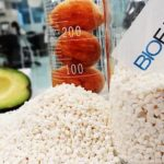 Avocado Pits Converted Into Completely Biodegradable plastic
