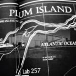 The Officially Ignored Connection Between Lyme Disease and Plum Island