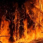 Australia Burning: Disaster Capitalism or Something Else?