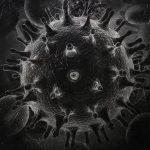 Vaccines and Biowarfare