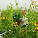 Giving Back to the Earth: A Farming Family's Loving Journey in Regenerative Farming