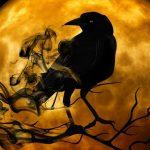 Stephen King's 'The Stand' and the 'Corvid 19' Coronavirus Pandemic