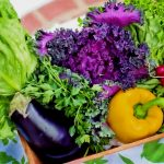35 Vegetables that Grow in 60 Days or Less