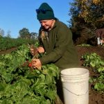 Family Farm in Maine Couldn't Make it After Restaurants Close – Until the Neighbors Showed Up