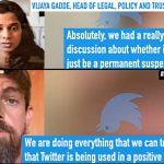 Twitter Senior Executive Vijaya Gadde Details Plans for Political Censorship on a Global Scale