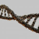 Glyphosate Herbicides Change Gene Function and Cause DNA Damage – New Study