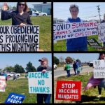 'End Massachusetts Medical Mandates' Holds Another Successful Demonstration in Hyannis