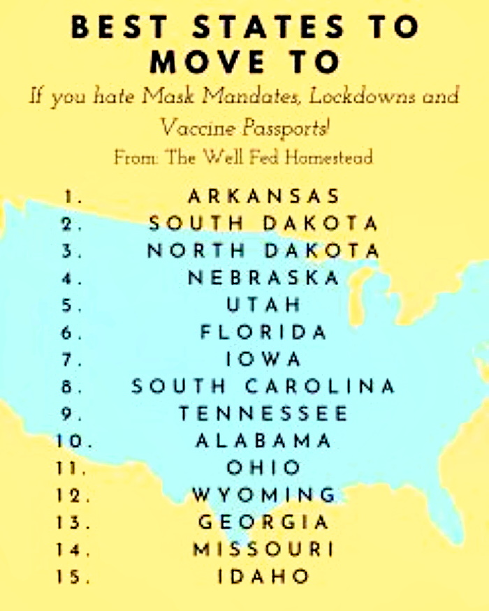 Best States to Move to if You Hate Mask Mandates, Lockdowns and Vaccine Passports  1a
