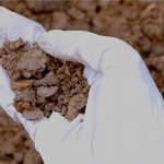 Toxic Corporations Are Destroying the Planet's Soil