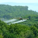 Maine Bans Aerial Spraying of Harmful Herbicides in State's Forests